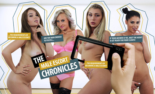 The%20Male%20Escort%20Chronicles%2021 m - The Male Escort Chronicles 2 [lifeselector,SuslikX]