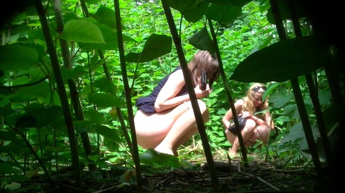 three beautiful girls pee in the bushes