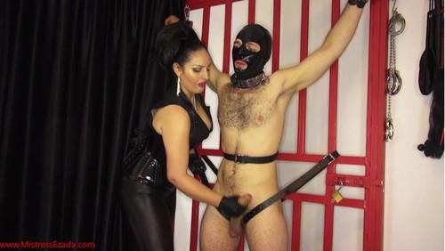 Mistress Ezada Sinn – MP4/SD – No, not allowed to cum