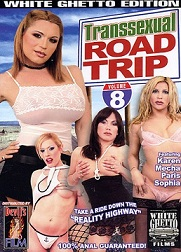 Transsexual Road Trip  8 Cover