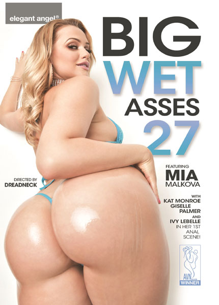 Big Wet Asses 27 (2018/WEBRip/Standard Quality SD)