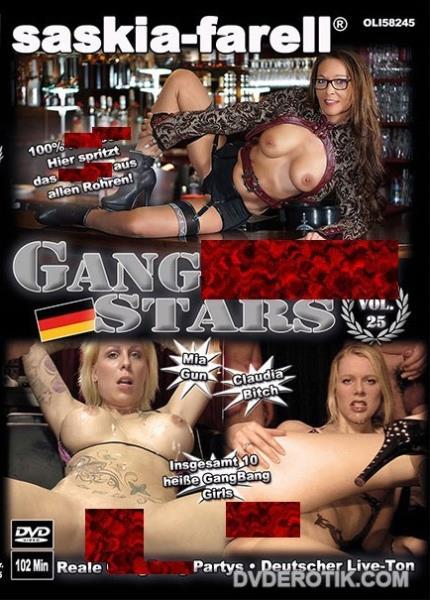 Gangbang Stars 25 (2017/DVDRip)