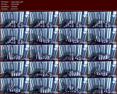 Cage%20Sleep.t_m.jpg