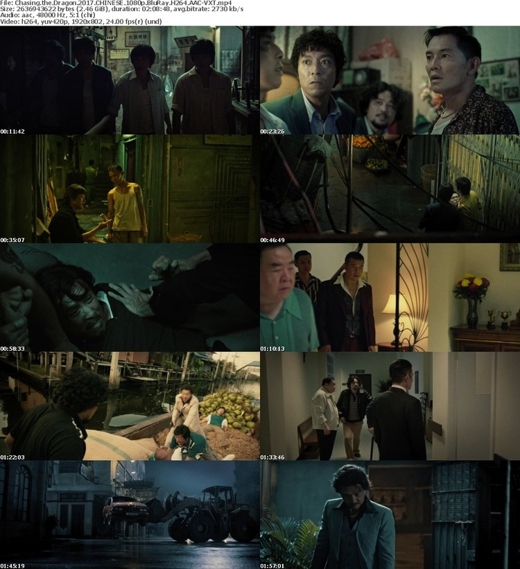 Chasing the Dragon 2017 CHINESE 1080p BluRay H264 AAC-VXT