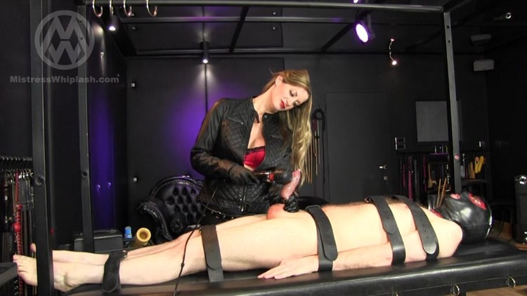 Photos and other diminished orgasm femdom