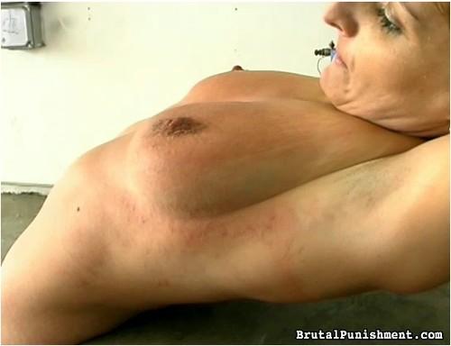 http://ist4-1.filesor.com/pimpandhost.com/9/6/8/3/96838/5/B/x/m/5BxmT/BrutalPunishment-p23_cover_m.jpg